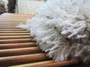 Tasmanian wool